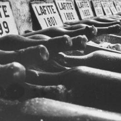 Вино не всегда дорожает с годами