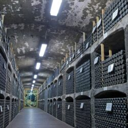 Коллекционирование алкоголя как способ инвестирования