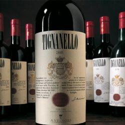 Великие вина Италии: Сассикайя и другие супертосканские вина