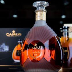 Самые дорогие сорта коньяка Camus