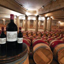 Вино Chateau Lafite-Rothschild 2020 года